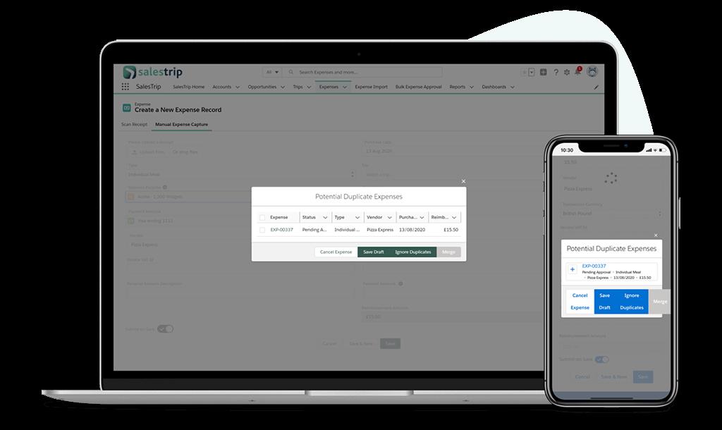 Duplicate expenses screenshot on desktop and phone